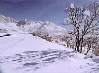 تصاويري از طبيعت زيباي زمستان