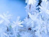 تصویر زمستان
